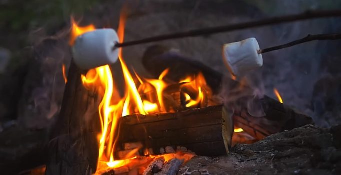 Perfect for toasting marshmallows